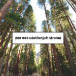 V roce 2016 se v Praze díky třídění papíru ušetřilo 220 tisíc stromů