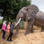 Slon v životní velikosti vyrobený z téměř 30 tisíc použitých baterií upozorňuje na problém se skládkováním