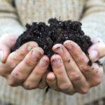 Vyzkoušejte vermikompostování a podpořte tak půdu kvalitním hnojem