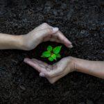 Žít ekologičtěji není tak složité, jak by se mohlo zdát