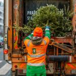 Likvidace vánočních stromků aneb ať symbol vánoční radosti nedělá jiným starosti
