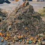 Nedůslednost bioodpadu nesvědčí